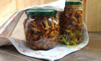 Как мариновать грибы лисички на зиму в домашних условиях